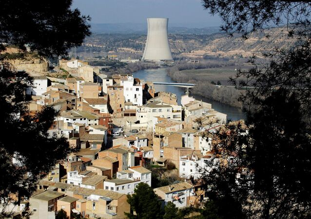 FILE PHOTO: A view of Asco village and a nuclear plant, which uses the waters of the Ebro river water to cool it, in Asco near Tarragona January 27, 2010.