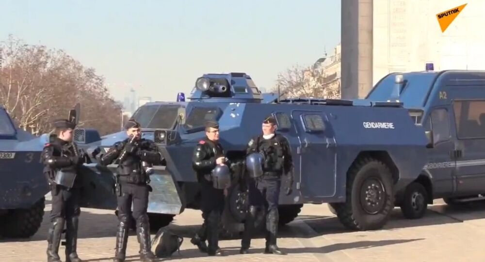 Police During Yellow Vests Protests, 14th Week