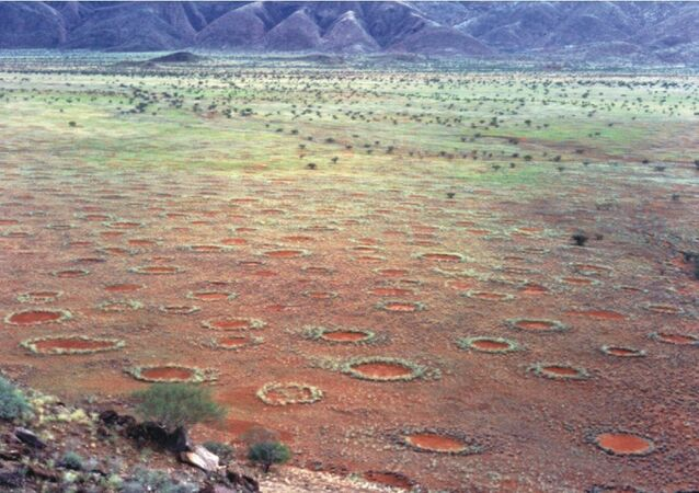 """""""Fairy circles"""" in Namibia"""