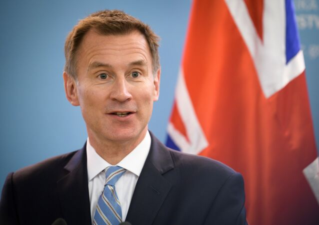 Britain's Foreign Secretary Jeremy Hunt holds a press conference following a meeting with his Slovenian counterpart on February 21, 2019, in Ljubljana