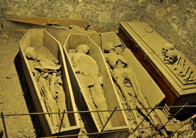 Mummies in the St Michan's Church crypt
