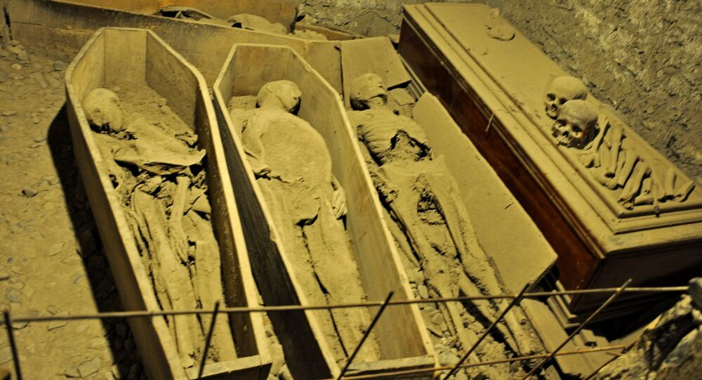 Mummies in the St Michan's Church crypt