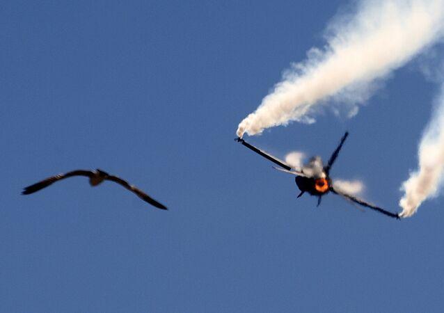 Pakistani Air Force F-16 fighter jet