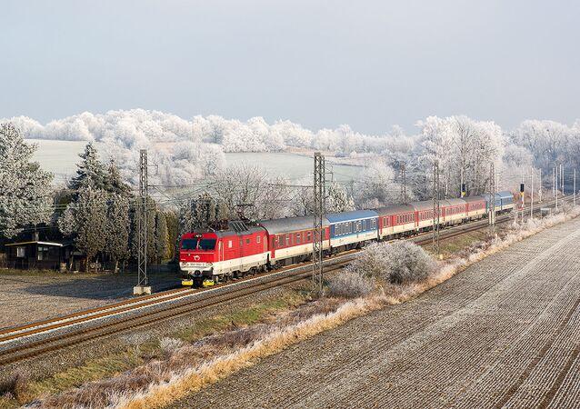 A train in Czech Republic (File photo).