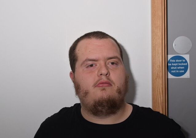 Lewis Ludlow, who was sentenced in London on 6 March 2019