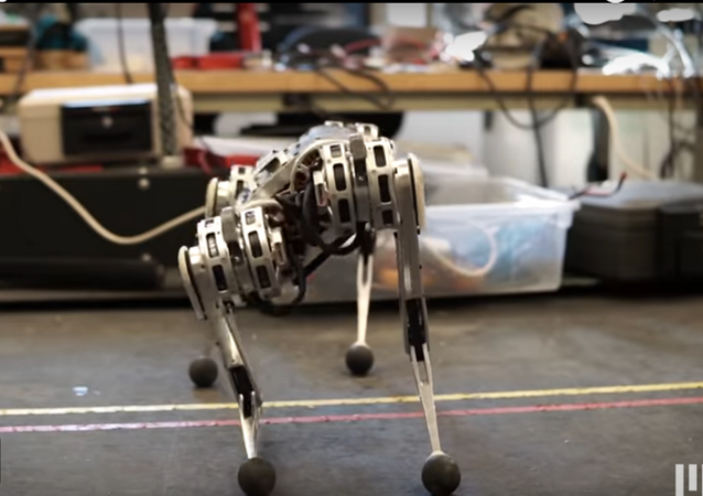 MIT's Four-Legged 'Mini Cheetah' Robot Climbs, Runs, Backflips