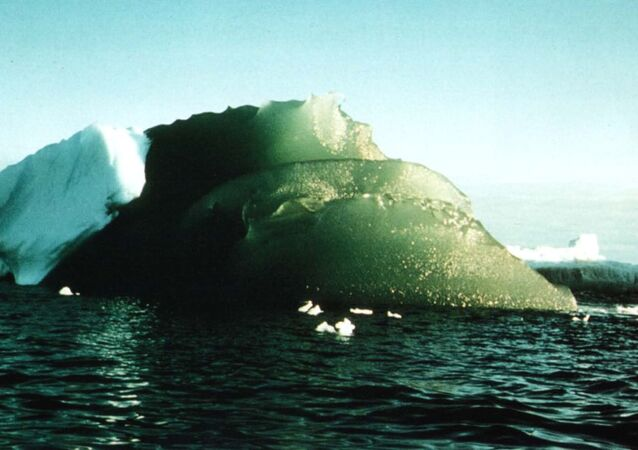 Why are some icebergs green?