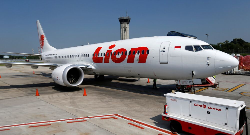 Lion Air's Boeing 737 Max 8 airplane
