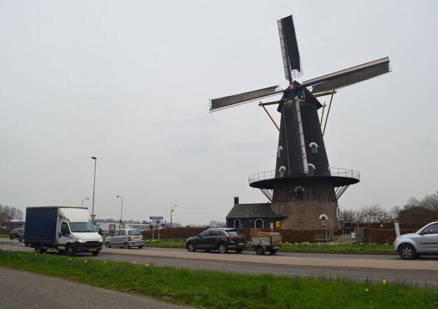 Dutch provincial election