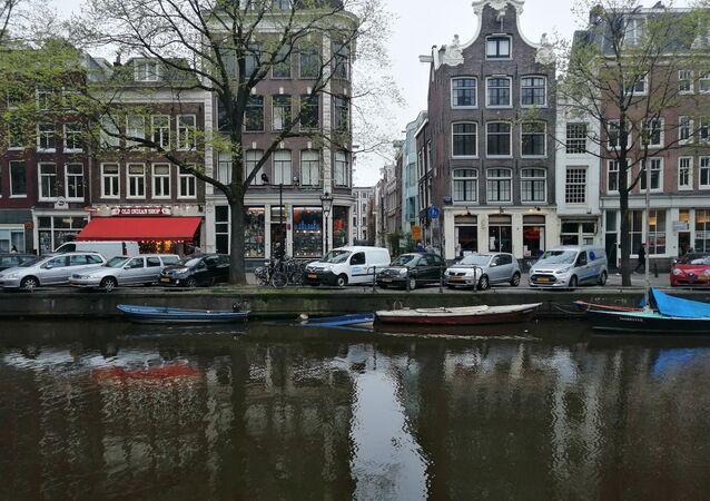 Dutch provincial councils' elections