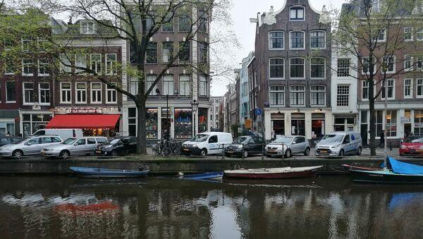 Dutch provincial councils' elections - Sputnik International