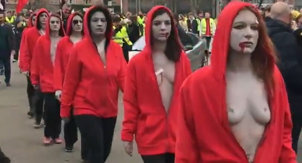 Topless women amid Yellow Vests protests in Lille