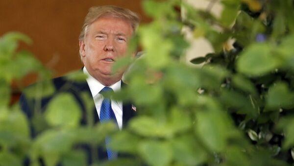 US President Donald Trump steps out of the Oval Office - Sputnik International