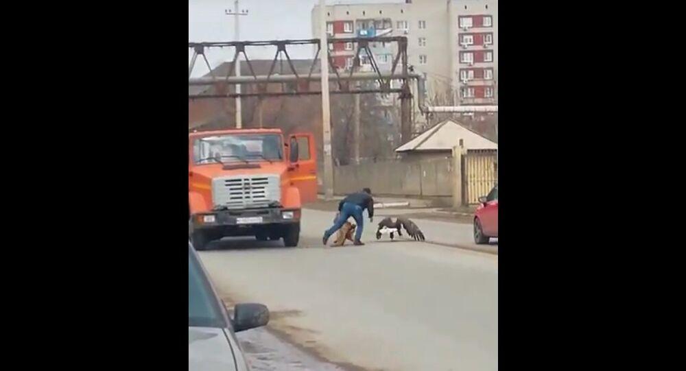 В Астрахани ловят огромную птицу