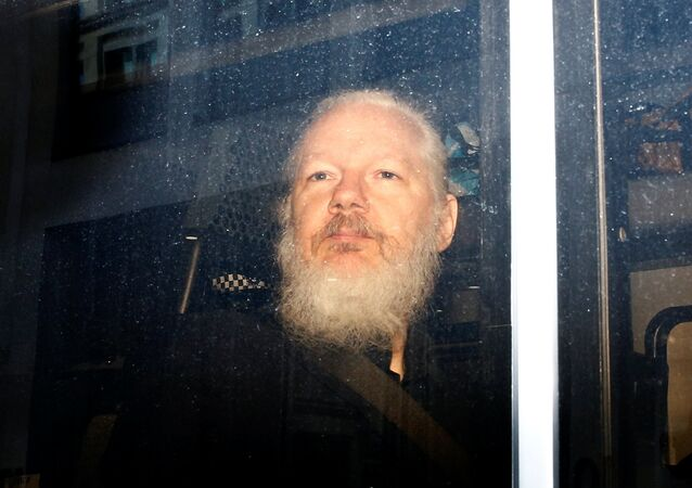 WikiLeaks founder Julian Assange is seen in a police van, after he was arrested by British police, in London, Britain April 11, 2019
