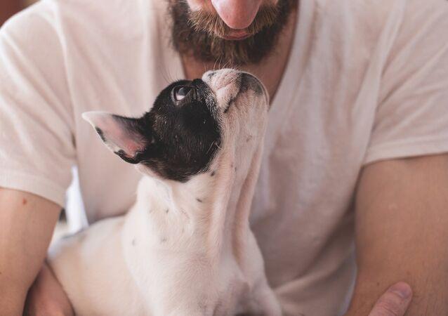 A dog owner