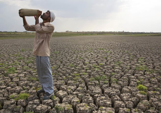 In this May 10, 2016, file photo, a Shepard drinks water on the dry bed of Manjara Dam, which supplies water to Latur and nearby villages in Marathwada region, in the Indian state of Maharashtra