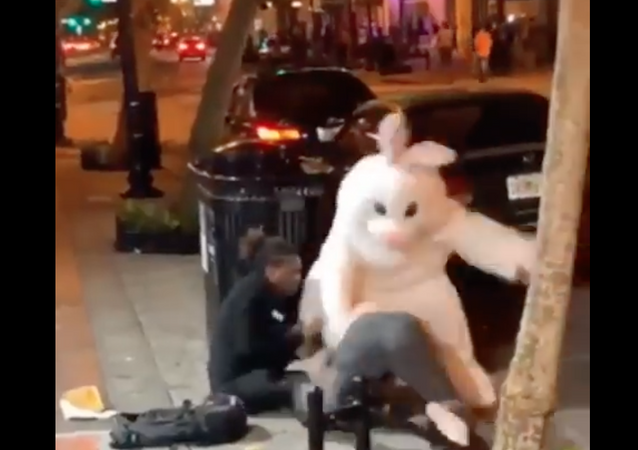 Easter Bunny Fight