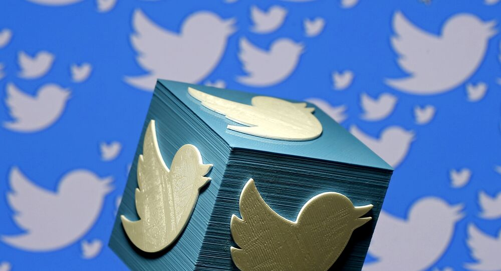 A 3D-printed logo for Twitter is seen in this picture illustration made in Zenica, Bosnia and Herzegovina on January 26, 2016