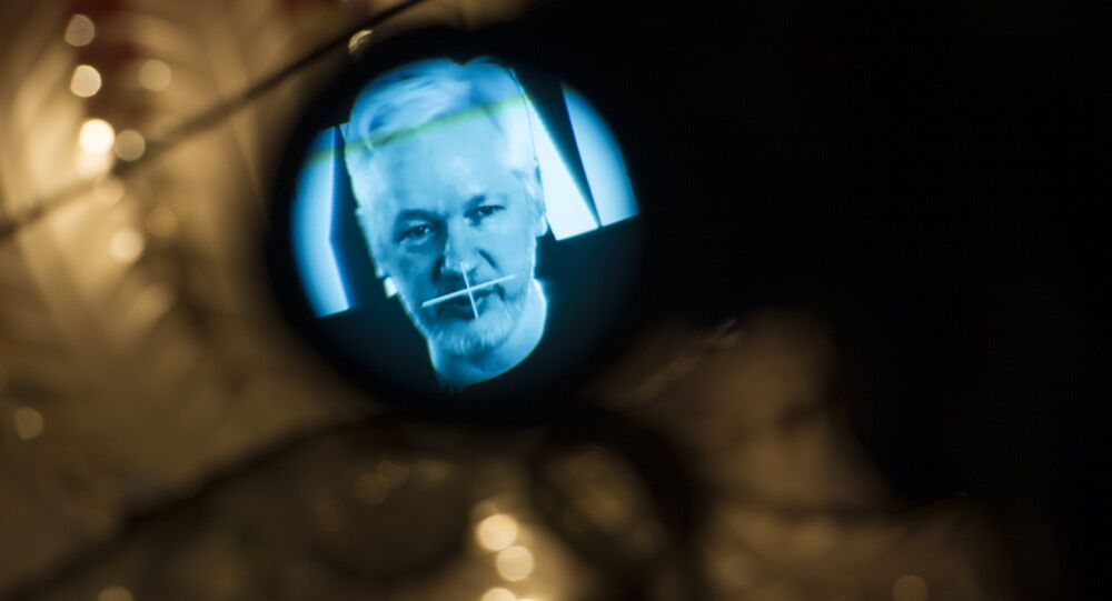 Julian Assange, founder of the online leaking platform WikiLeaks, is seen through the eyepeace of a camera as he is displayed on a screen via a live video connection during a press conference on the platform's 10th anniversary on October 4, 2016 in Berlin
