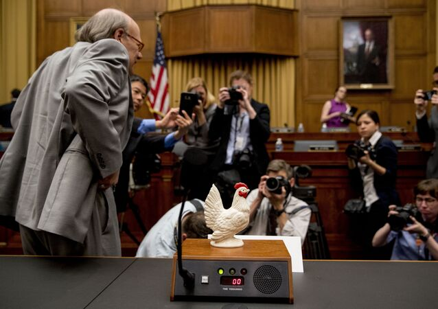 Rep. Steve Cohen, D-Tenn., left, places a prop chicken on the witness desk for Attorney General William Barr after he does not appear before a House Judiciary Committee hearing on Capitol Hill in Washington, Thursday, May 2, 2019.