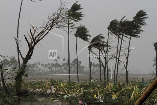 Uprooted trees lie as others stand amid gusty winds in Puri district after Cyclone Fani hit the coastal eastern state of Odisha, India