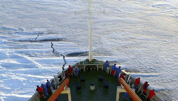 In this Dec. 17, 2005 file photo released by Xinhua News Agency, members of the Chinese Antarctica Research Team wait for the arrival at the continent on board of the polar expedition ship Xuelong - Sputnik International