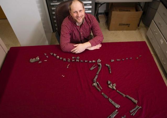 Sterling Nesbitt sits next to the fossilized bones of Suskityrannus hazelae