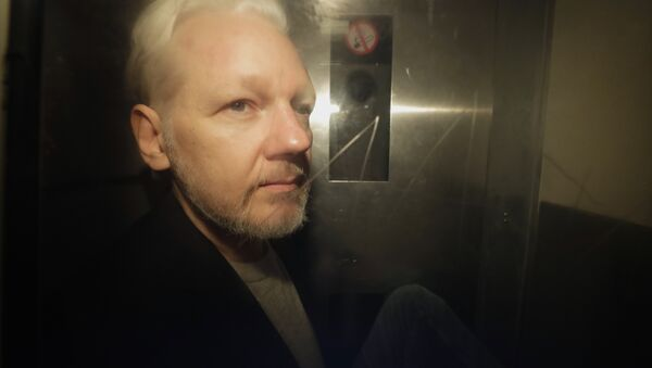 WikiLeaks founder Julian Assange being taken from court, where he appeared on charges of jumping British bail seven years ago, in London, Wednesday May 1, 2019 - Sputnik International