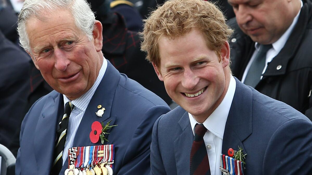 young prince harry furiously attacked prince charles author claims sputnik international young prince harry furiously attacked