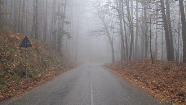 A quiet tuscany road - Sputnik International