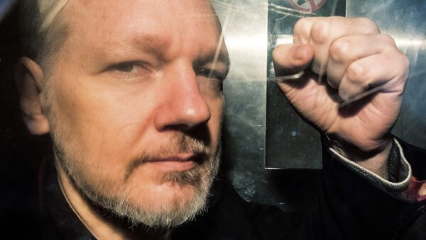 In this file photo taken on May 01, 2019 WikiLeaks founder Julian Assange gestures from the window of a prison van as he is driven out of Southwark Crown Court in London, after having been sentenced to 50 weeks in prison for breaching his bail conditions in 2012 - Sputnik International