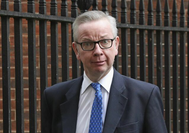 Britain's Environment, Food and Rural Affairs Secretary Michael Gove