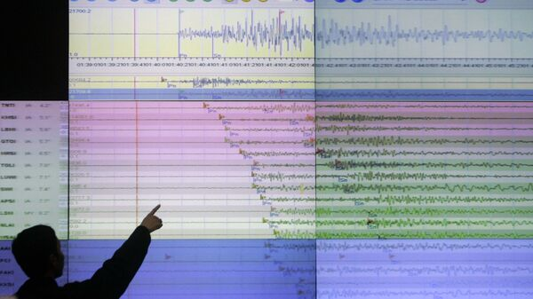 A geologist looks at a screen showing the seismograph reading of the powerful earthquake - Sputnik International