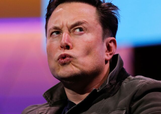 SpaceX owner and Tesla CEO Elon Musk reacts during a conversation with legendary game designer Todd Howard (not pictured) at the E3 gaming convention in Los Angeles, California, U.S., June 13, 2019