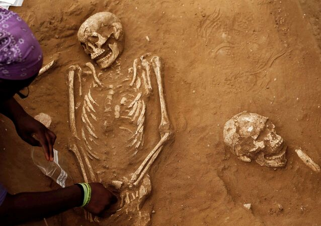 An American archaeology student unearths a skeleton during excavation works at the first-ever Philistine cemetery at Ashkelon National Park in southern Israel June 28, 2016.