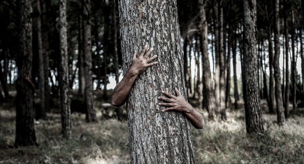Man hiding behind a tree