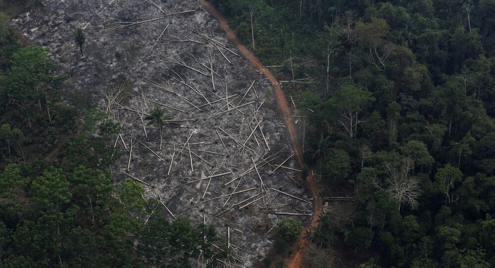 An aerial view of a deforested plot of the Amazon at the Bom Futuro National Forest in Porto Velho