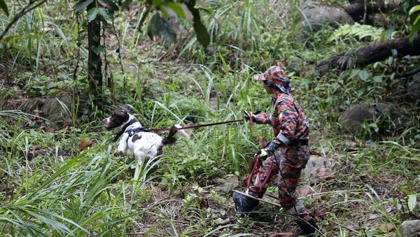 Malaysian police officer with a sniffer dog searching for Nora Quoirin - Sputnik International