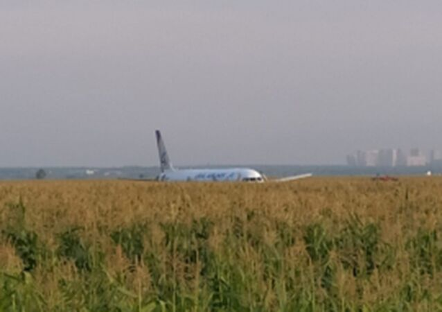 Ural Airlines flight U6178 from Moscow to Simferopol made an emergency landing in corn field