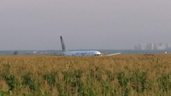 Ural Airlines flight U6178 from Moscow to Simferopol made an emergency landing in corn field - Sputnik International