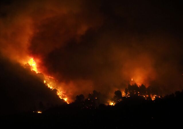 A fire fanned by a strong wind devours vegetation near the village of Monze, in the Aude department, southern France on August 15, 2019.