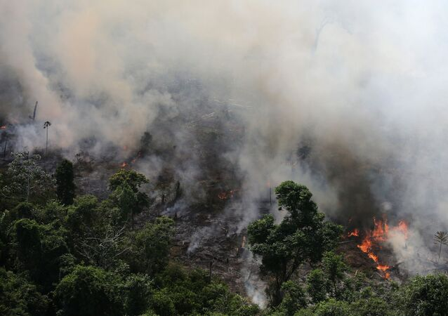 An aerial view of a tract of Amazon jungle burning as it is being cleared by loggers and farmers near the city of Novo Progresso, Para state, Brazil September 23, 2013. Picture taken September 23, 2013.