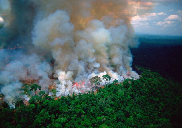 The photo of thick plumes of smoke billowing from fires the Amazon forest, shared by French President Emmanuel Macron, apepars to have been taken by a photographer who died in 2003, which means that the photo is 16 years old at the very least.