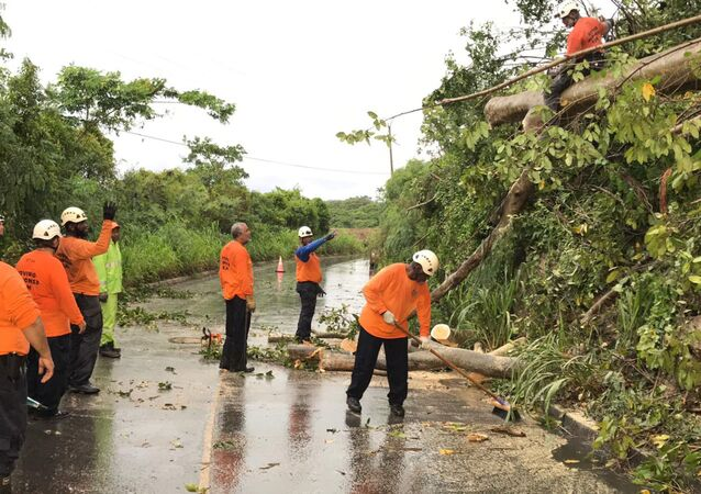 Volunteers remove a tree blocking a road after Tropical Storm Dorian passed overnight in Brighton St. George