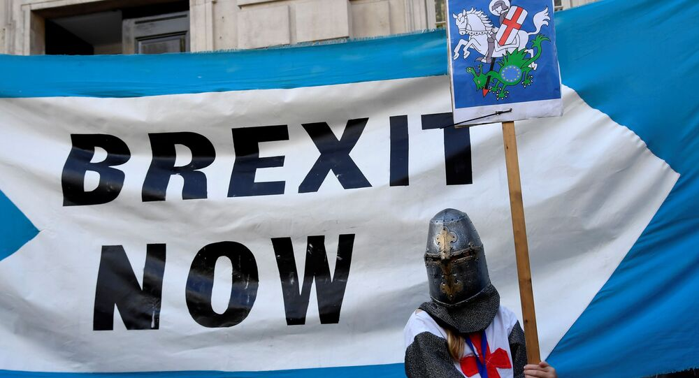 A pro-Brexit supporter holds a placard outside Cabinet Office in London, Britain August 29, 2019
