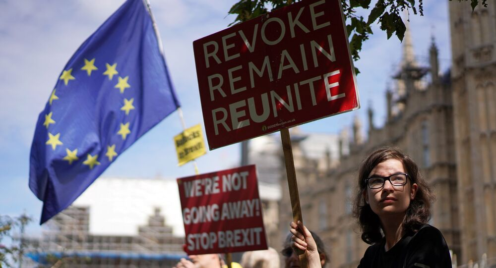 An anti-Brexit protestor holds a sign outside the Houses of the Parliament in London, Britain August 28, 2019