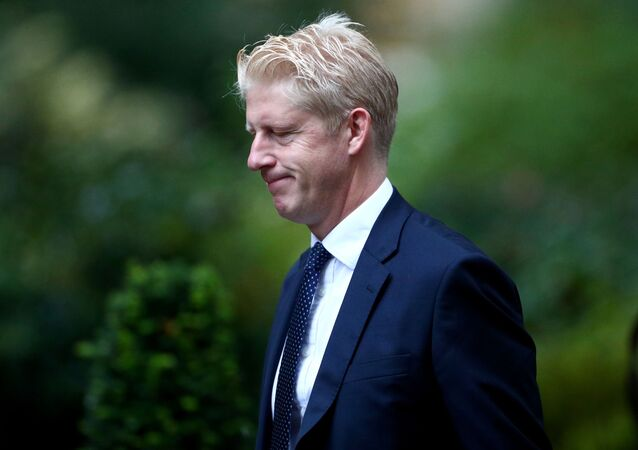 Britain's Minister of State for Business, Energy and Industrial Strategy Department and Education Department Jo Johnson walks outside Downing Street in London, Britain, September 4, 2019