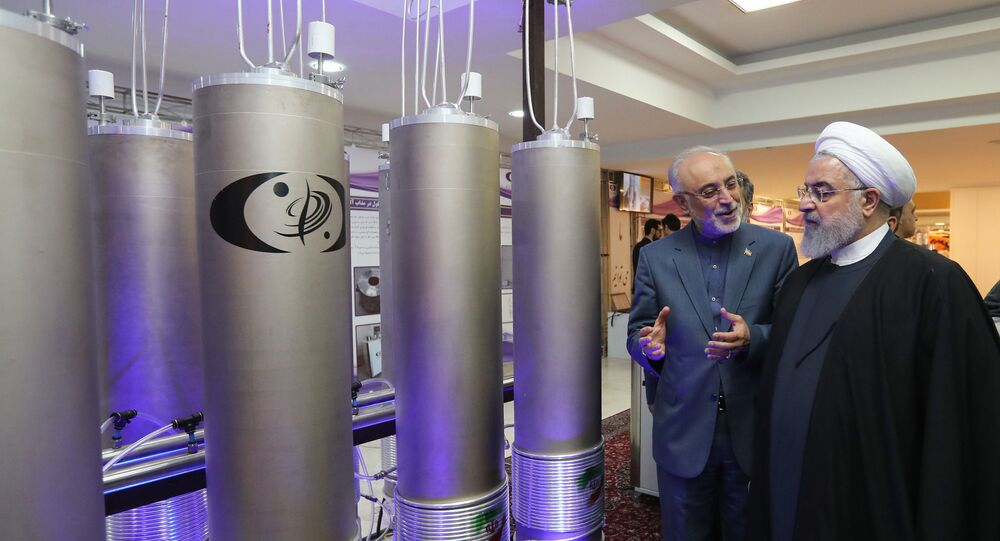 In this file handout photo taken on April 09, 2019 by the Iranian presidential office, Iranian President Hassan Rouhani (2nd L) listens to the head of Iran's nuclear technology organisation Ali Akbar Salehi (R) during the nuclear technology day in Tehran.