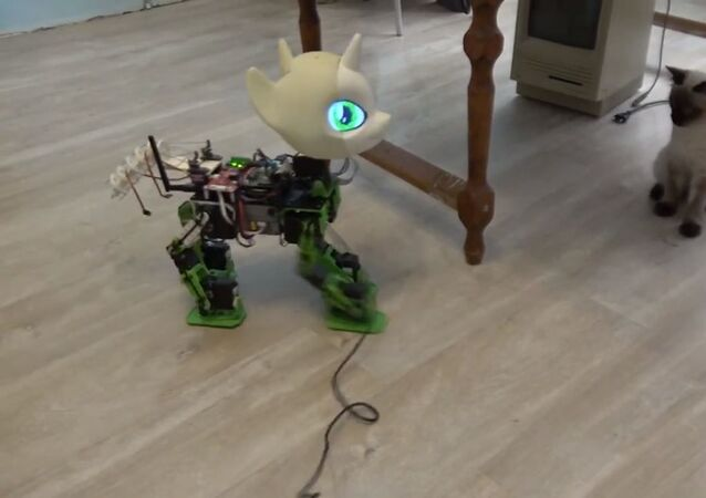 Russian-made My Little Pony Robot 'Sweetie Bot'